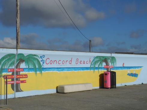Concord Beech - Canvey Island