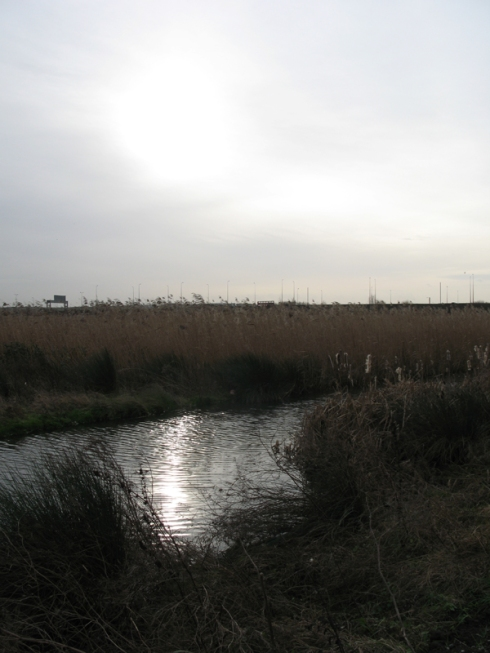 View of the A13 from Rainham Marshes