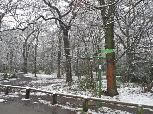 Green Chain Walk Oxleas Woods