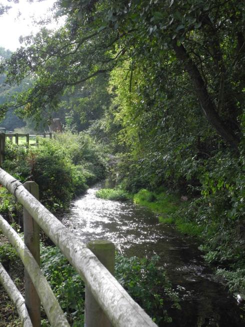 River Shuttle Eltham