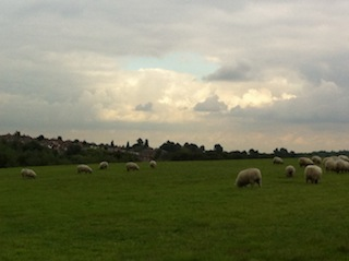 Woodlands Farm Trust today