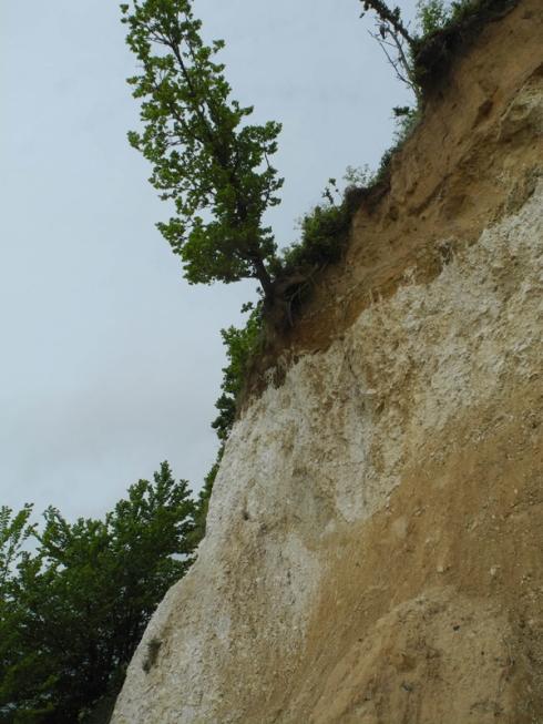 Erosion Pegwell Bay