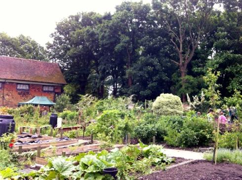 Abbey Physic Garden Faversham