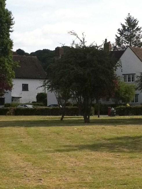 Lovelace Green Progress Estate